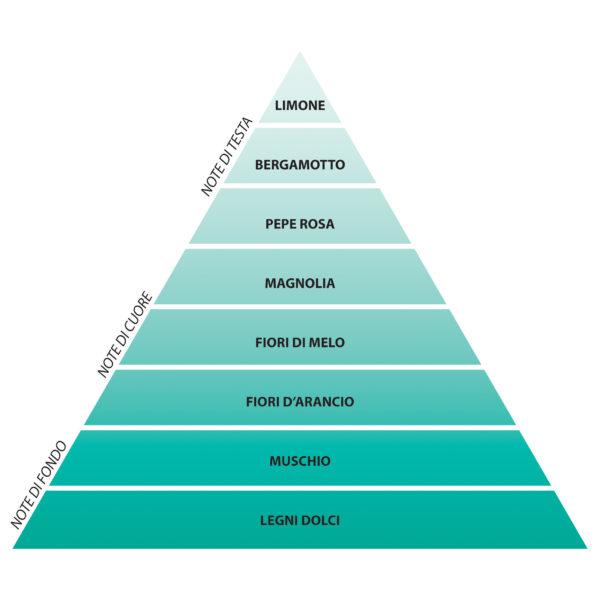 piramide olfattiva profumo capri